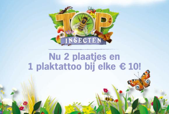 Spaar nu voor insectenplaatjes en plaktattoos!