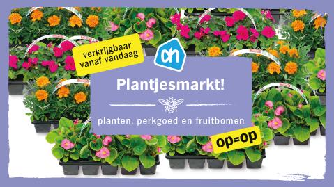 Plantjesmarkt!